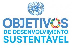 Portuguese-SDG-Icons-11