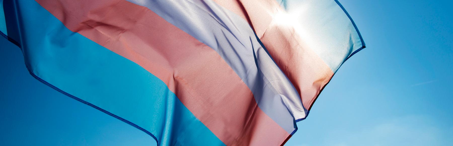 População trans ainda é a mais vulnerável aos impactos do estigma e da discriminação no Brasil